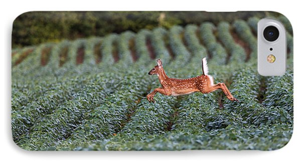 Flight Of The White-tailed Deer IPhone 7 Case by Everet Regal