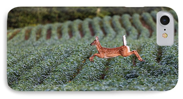 Flight Of The White-tailed Deer IPhone Case by Everet Regal