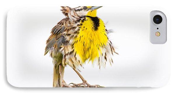 Flluffy Meadowlark IPhone Case by Bill Swindaman