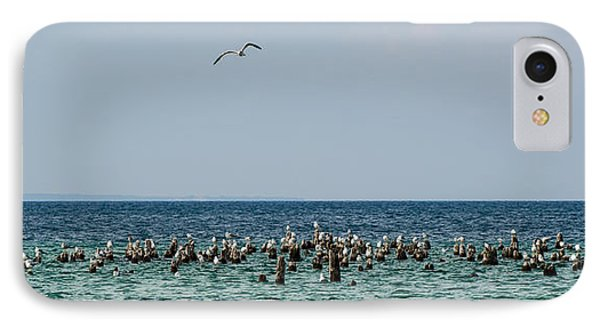 Flock Of Seagulls IPhone Case by Sebastian Musial