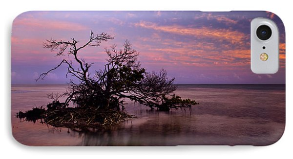 Florida Mangrove Sunset Phone Case by Mike  Dawson
