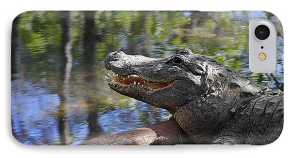 Florida - Where The Alligator Smiles IPhone Case by Christine Till