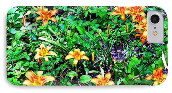 Flowers 2 Phone Case by Dietrich ralph  Katz
