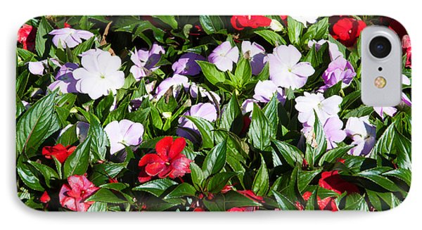 Flowers In The Garden At Villa IPhone Case by Panoramic Images