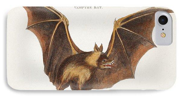 Flying Fox Fruit Bat IPhone Case by Paul D Stewart