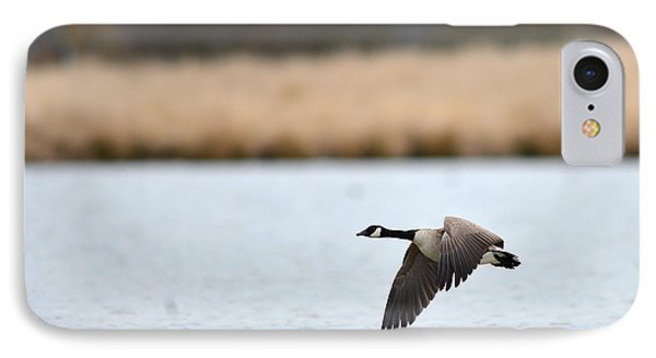 Flying Low IPhone Case by Randy Giesbrecht