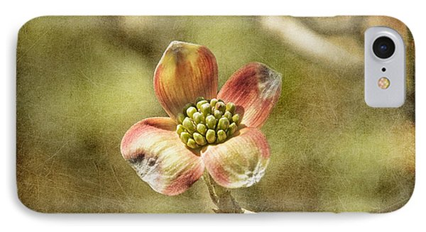 Focus On Dogwood Phone Case by Terry Rowe