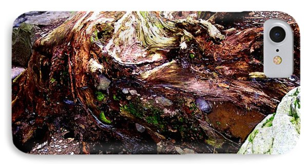Forest Floor IPhone Case by Janine Riley