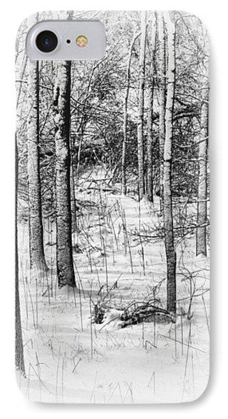 Forest In Winter IPhone Case by Tom Mc Nemar