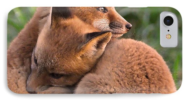 Fox Cubs Cuddle Phone Case by William Jobes