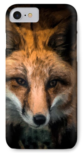 Fox Portrait IPhone Case by Ernie Echols