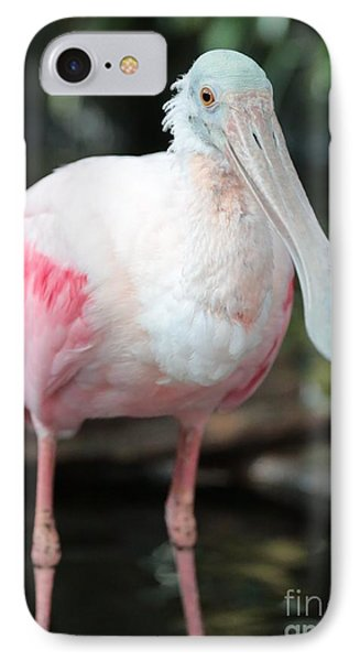 Friendly Spoonbill IPhone Case by Carol Groenen