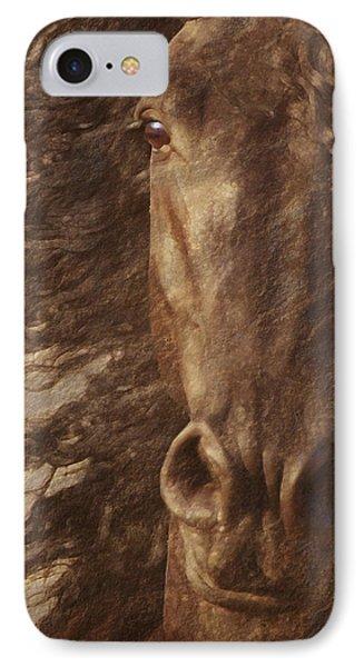 Friesian Spirit IPhone Case by Melinda Hughes-Berland