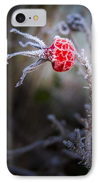 Frosted Phone Case by Jean Noren