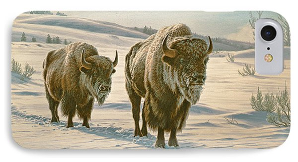 Frosty Morning - Buffalo IPhone Case by Paul Krapf