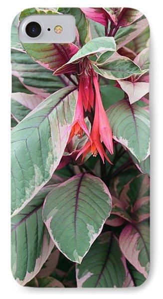 Fuchsia 'firecracker' IPhone Case by Geoff Kidd
