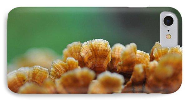 Fungus Growing On Log Phone Case by Dan Friend