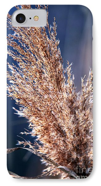 Gentle Nature IPhone Case by John Rizzuto