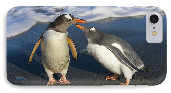 Gentoo Penguin Chick Begging For Food IPhone 7 Case by Yva Momatiuk and John Eastcott