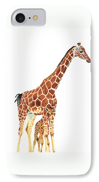 Giraffe Art - A Mother's Love - By Sharon Cummings IPhone Case by Sharon Cummings