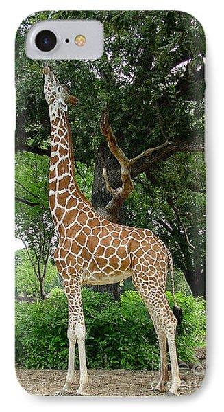 Giraffe Eats-09053 Phone Case by Gary Gingrich Galleries
