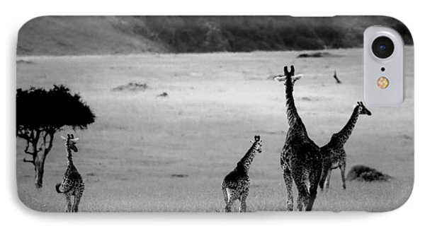 Giraffe In Black And White IPhone Case by Sebastian Musial