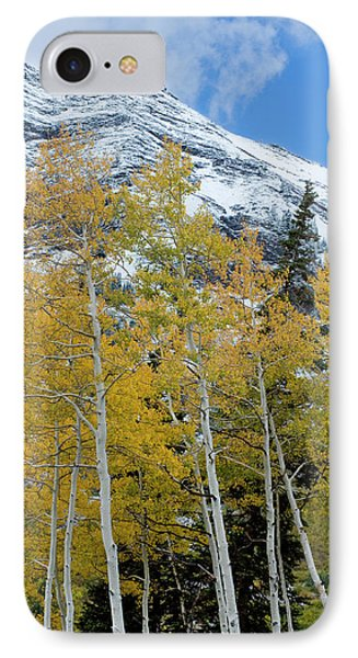Golden Aspen Trees In Fall Colors IPhone Case by Howie Garber