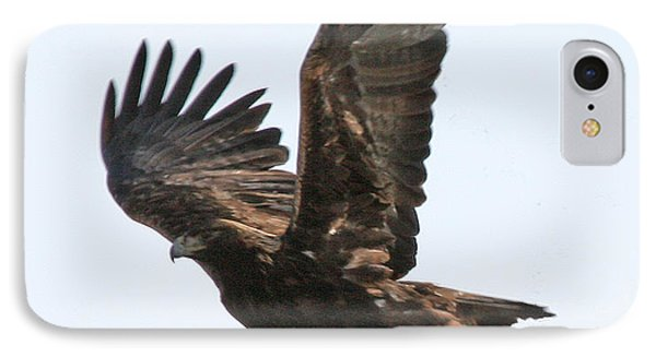 IPhone Case featuring the photograph Golden Eagle Takes Off by Bill Gabbert