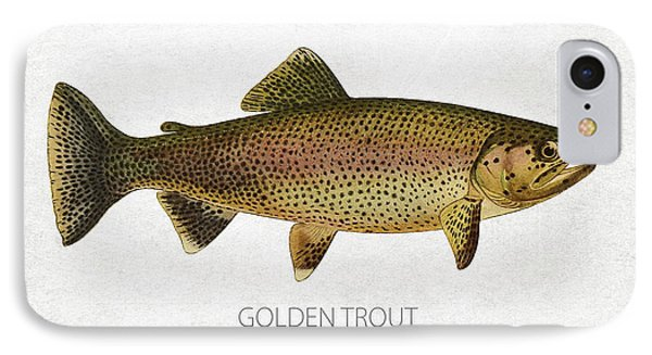 Golden Trout IPhone Case by Aged Pixel