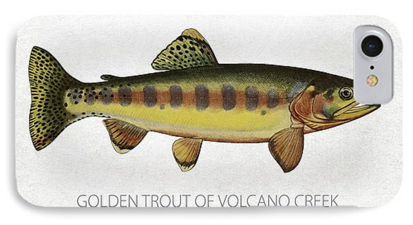 Golden Trout Of Volcano Creek IPhone Case by Aged Pixel