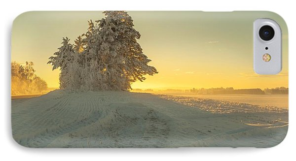 Golden Winter IPhone Case by Rose-Maries Pictures