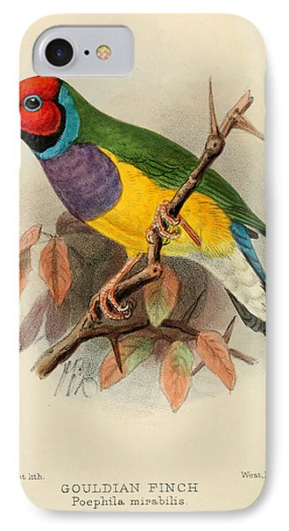 Gouldian Finch IPhone 7 Case by J G Keulemans