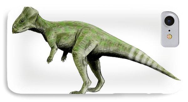 Graciliceratops Dinosaur IPhone Case by Nobumichi Tamura