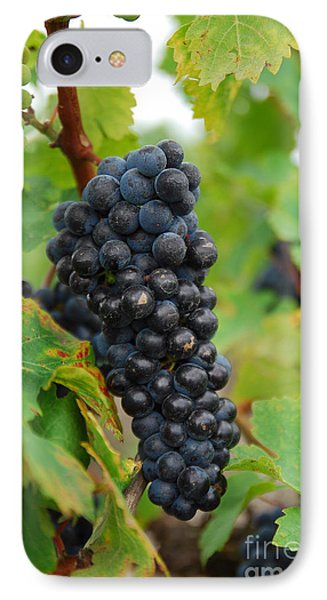 Grapes Phone Case by Hannes Cmarits