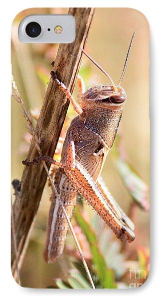 Grasshopper In The Marsh IPhone 7 Case by Carol Groenen