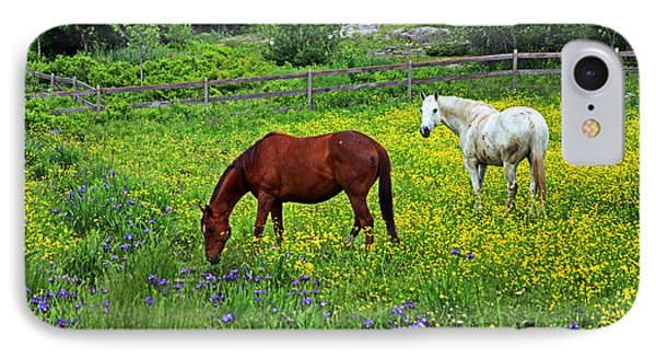 Grazing Amongst The Wildflowers IPhone Case by Karol Livote