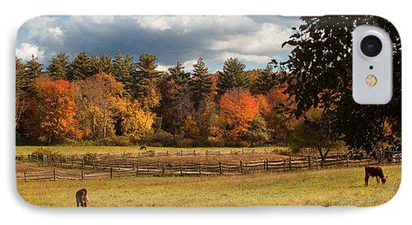 Grazing On The Farm IPhone Case by Joann Vitali