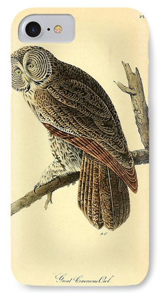 Great Cinerous Owl IPhone Case by Philip Ralley
