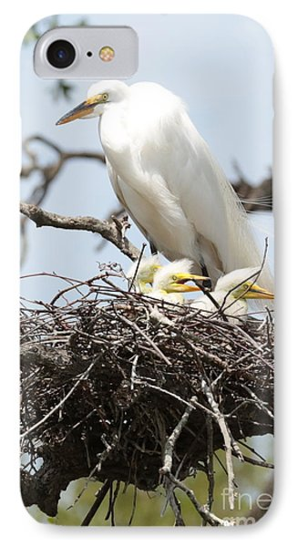 Great Egret Nest With Chicks And Mama Phone Case by Carol Groenen