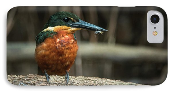 Green And Rufous Kingfisher IPhone 7 Case by Pete Oxford