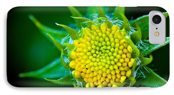 Green And Yellow Bloom IPhone Case by Sennie Pierson