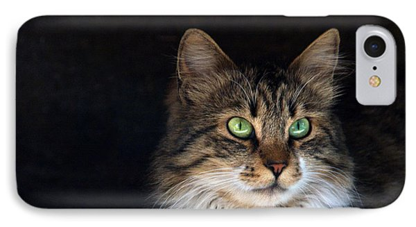 Green Eyes IPhone Case by Stelios Kleanthous