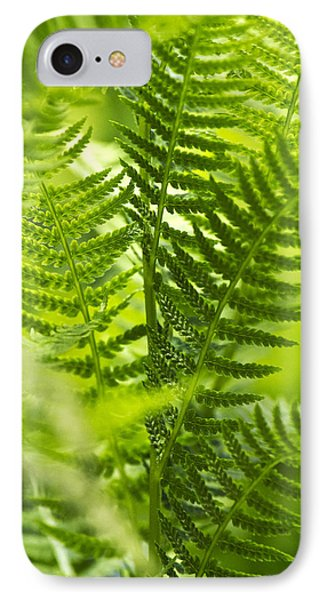 Green Fern Art Phone Case by Christina Rollo
