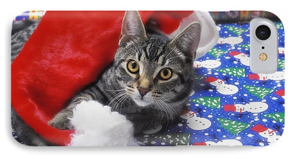 Grey Tabby Cat With Santa Claus Hat Phone Case by Thomas Kitchin & Victoria Hurst