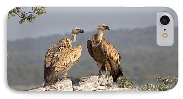 Griffon Vulture Pair Extremadura Spain IPhone 7 Case by Gerard de Hoog