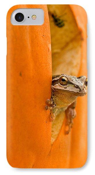 Halloween Surprise  Phone Case by Jean Noren
