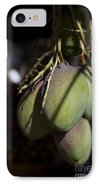 Hawaiian Mango Kihei Maui Hawaii IPhone Case by Sharon Mau
