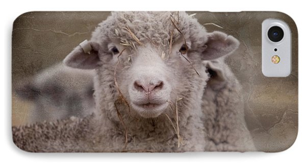 Hay Ewe Phone Case by Michelle Wrighton