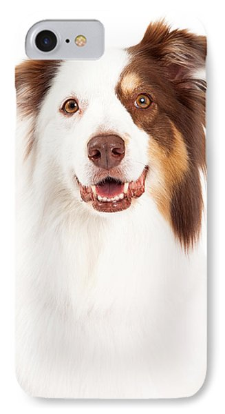 Head Shot Of Beautiful Border Collie IPhone Case by Susan Schmitz