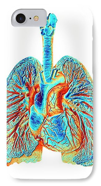 Heart And Lungs IPhone Case by Pasieka